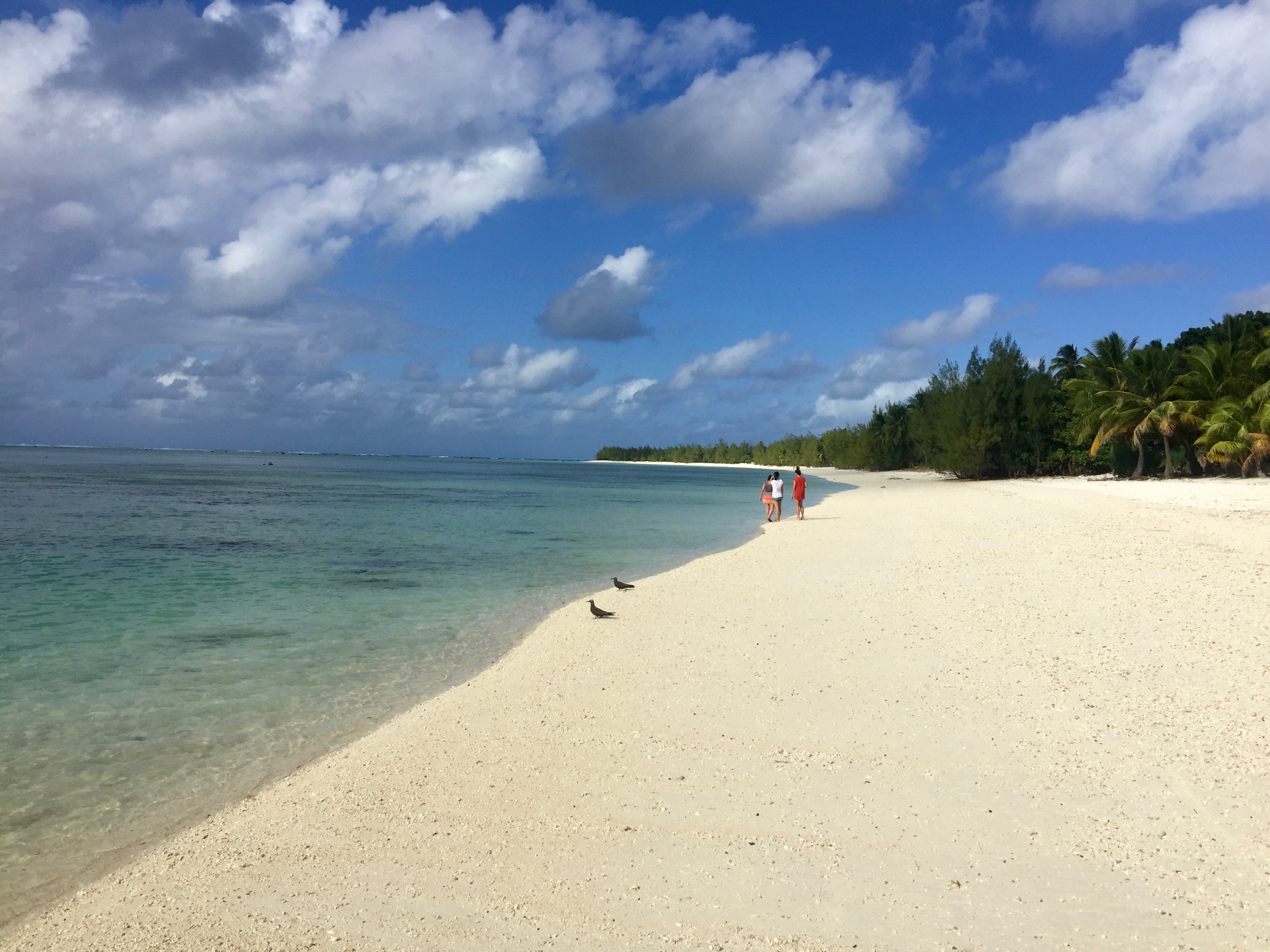 Exploring Aitutaki Atoll in the Cook Islands – Day 1 of 5